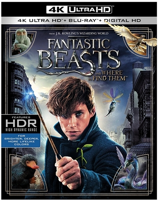 Fantastic Beasts and Where to Find Them 4K UHD Blu-ray (Rental)