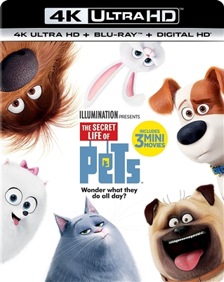 Secret Life of Pets 4K UHD Blu-ray (Rental)