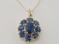 Luxurious Sterling Silver Sapphire Cluster Pendant & Necklace