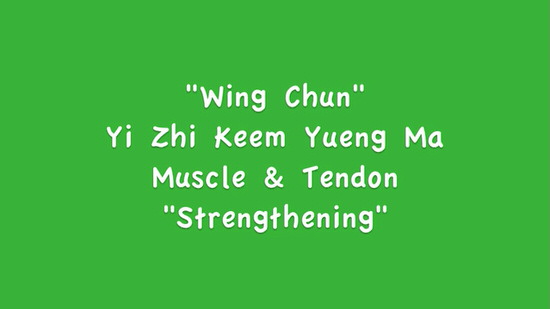 DOWNLOAD: Greg Yau - Wing Chun Power Stance Course - Bonus - Muscle & Tendon Change Exercises
