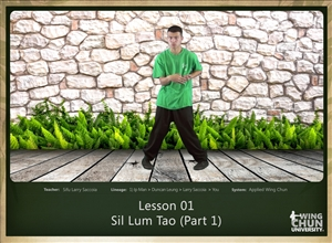 DOWNLOAD: Larry Saccoia - Applied Wing Chun - Lesson 001 - Sil Lum Tao (Part 1)
