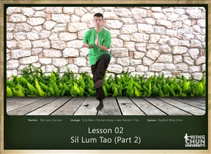 DOWNLOAD: Larry Saccoia - Applied Wing Chun - Lesson 002 - Sil Lum Tao (Part 2)