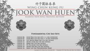 DOWNLOAD: Tyler Rea - Jook Wan Heun System - Bundle - Foundations 02 - Chi Sao Sets