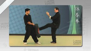 DOWNLOAD: Wayne Belonoha - Ving Tsun System - Lesson 14a - Kicking