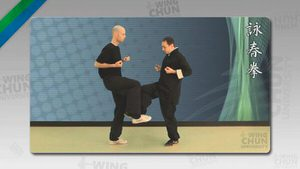 DOWNLOAD: Wayne Belonoha - Ving Tsun System - Lesson 25b - Chi Geuk, Part 2