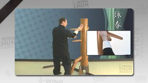 DOWNLOAD: Wayne Belonoha - Ving Tsun System - Lesson 38a - Wooden Dummy, Part 5
