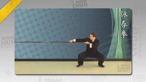 DOWNLOAD: Wayne Belonoha - Ving Tsun System - Lesson 43a - Long Pole Form, Parts 1 to 4