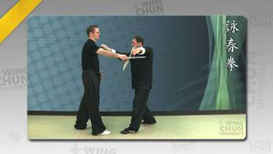 DOWNLOAD: Wayne Belonoha - Ving Tsun System - Lesson 49a - Sword Form, Part 8