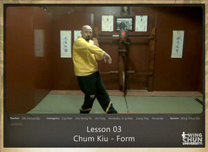 DOWNLOAD: Sifu Fernandez - WingTchunDo - Lesson 03 - Chum Kiu - Form