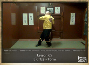 DOWNLOAD: Sifu Fernandez - WingTchunDo - Lesson 05 - Biu Tze - Form
