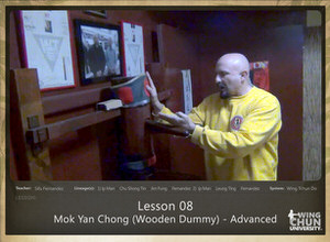DOWNLOAD: Sifu Fernandez - WingTchunDo - Lesson 08 - Mok Yan Chong (Wooden Dummy) - Advanced