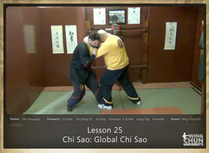 DOWNLOAD: Sifu Fernandez - WingTchunDo - Lesson 25 - Chi Sao - Global Chi Sao