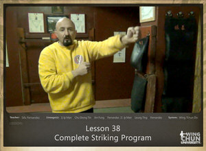 DOWNLOAD: Sifu Fernandez - WingTchunDo - Lesson 38 - Complete Striking Program