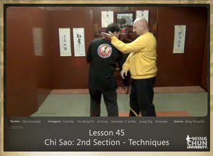 DOWNLOAD: Sifu Fernandez - WingTchunDo - Lesson 45 - Chi Sao - 2nd Section - Techniques