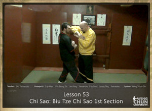 DOWNLOAD: Sifu Fernandez - WingTchunDo - Lesson 53 - Chi Sao - Biu Tze Chi Sao 1st Section