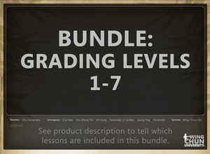 DOWNLOAD: Sifu Fernandez - WingTchunDo - Bundle - Grading Levels 1-7