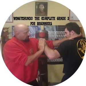 Sifu Fernandez - WingTchunDo The Complete Grade 3 for Beginners
