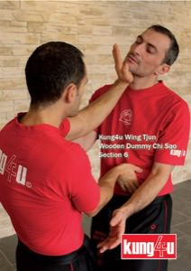 Sifu Taner & Sifu Graziano - Wooden Dummy Chi Sao Section 6