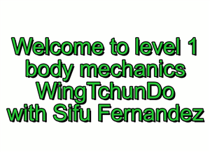 Sifu Fernandez - Wing Tchun Do -  Biomechanics Course Volume 1
