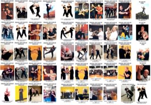 Lamar Davis - BUNDLE - 50 Video Set - Entire Hard Core Jeet Kune Do Collection