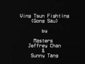 (Download Only) International Workshop Series Vol 11 - Sunny Tang - Gong Sau