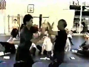 (Download Only) 1998 VTM Senior Certification Series Vol 3 - Ip Chun