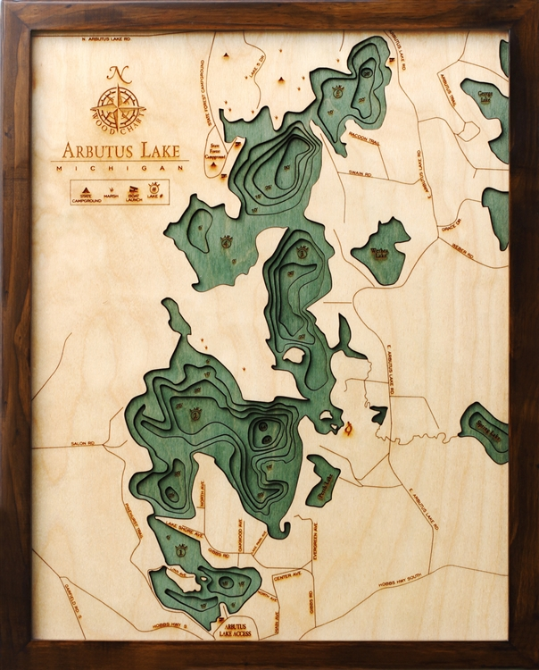 3D Arbutus Lake Nautical Real Wood Map Depth Decorative Chart
