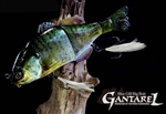 Jackall Gantarel Bluegill Swimbait