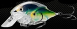 Koppers Baitball Series Threadfin Shad Square Bill