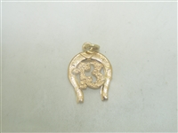 "Rose Gold Lucky ""13"" Horseshoe Pendant"