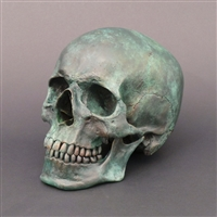 Human Skull Patinated Bronze
