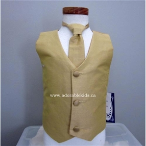 Poly-silk  Vest & Neck tie Set - Gold