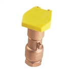 "Hunter HQ-44RC 1"" Female NPT Inlet"