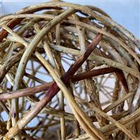 "Curly Willow Ball 4"" Natural"