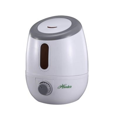 Ultrasonic Visible Mist Humidifier (QLS-05)