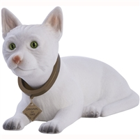 bobble head white cat
