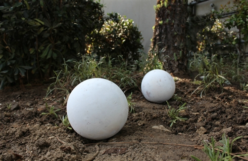 Garden Balls Decorative Unique 6 Inch High Outdoor Decorative Garden And Lawn White Balls Design Ideas
