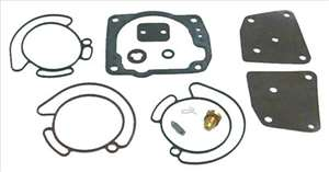 Carburetor Kit 438996