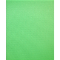 Chroma Green Vinyl Background | Backdrop Express