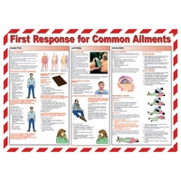 FIRST RESPONSE FOR COMMON AILMENTS - Workplace Safety Posters