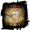 Sea Dog Treasure Map