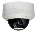 DNR Super Low Lux OSD Vandal Proof Dome Camera
