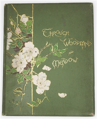 Wood, Helen & Nesbit, E. & Bingham, C Ca 1891 Through Woodland and Meadow 1st Ed
