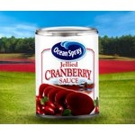 Ocean Spray Jellied Cranberry Sauce 14 oz