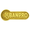Pin Banpro