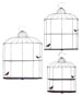 Chase Bird Cage Design Shelf Set 3
