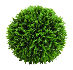 Amasia Botanical Round Grass Ball