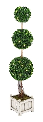 Oliver Triple Boxwood Ball Tree