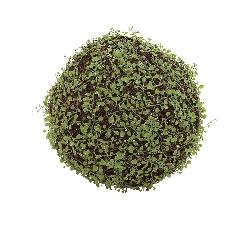Scotland Green Vine Grass Ball