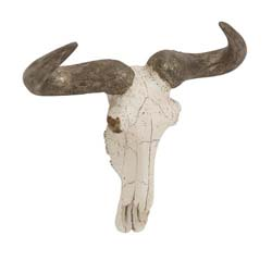 Dagmar Steer Wall Trophy Skull